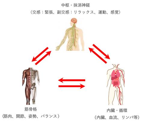 施術原理図